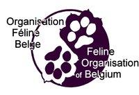 logo ofb-4